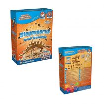 Stégosaurus Fossil Excavation
