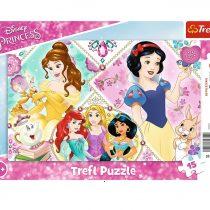 Princesses Disney 15 pièces